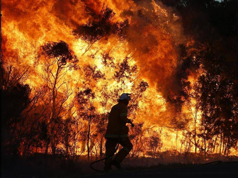 Australian Bushfires Worsen Rural Mental Health Crisis - How Can Telehealth Help?